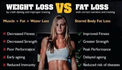 muscle vs fat 1