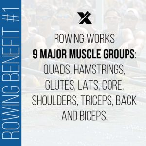 Rowing benefits: muscle groups